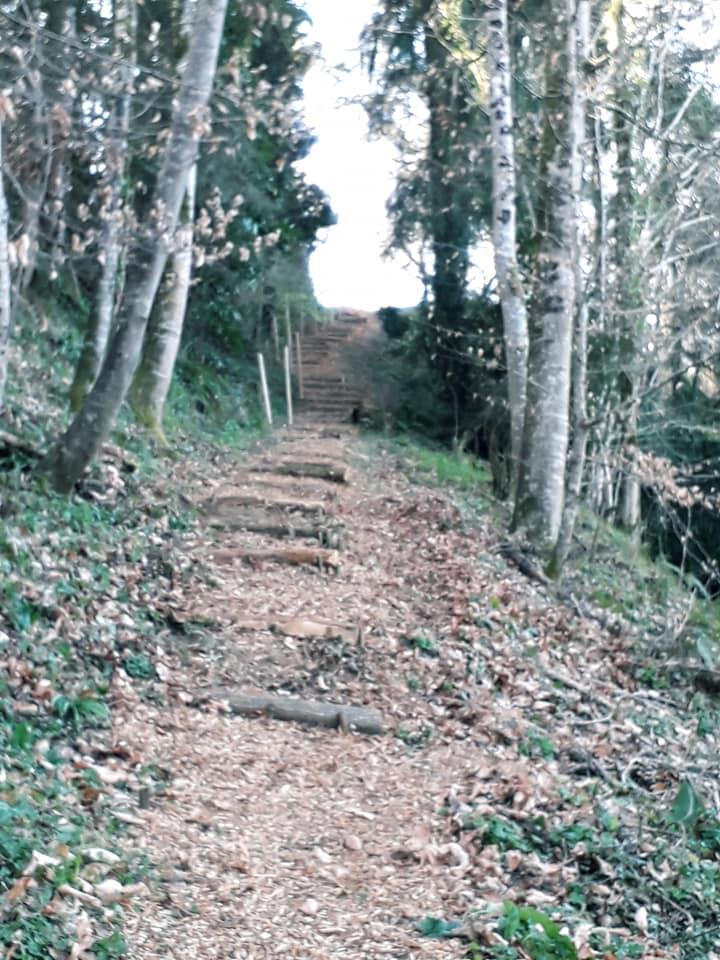 Sentier Barry 5